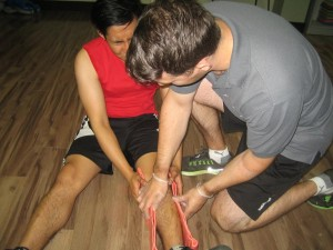 Use of splint is one way to immobilize the site of the snake bite.